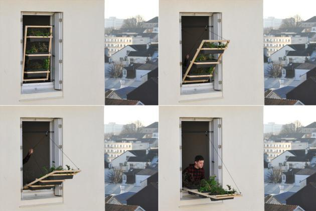 windows ornamental planters (2)