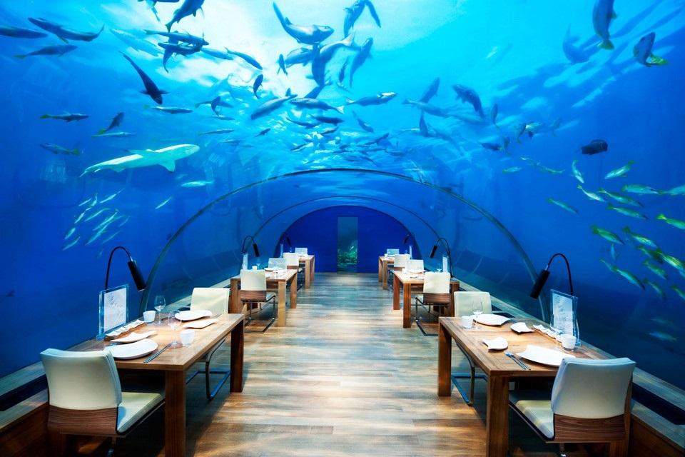 Conrad Rangali Island Resort - Maldives (23)