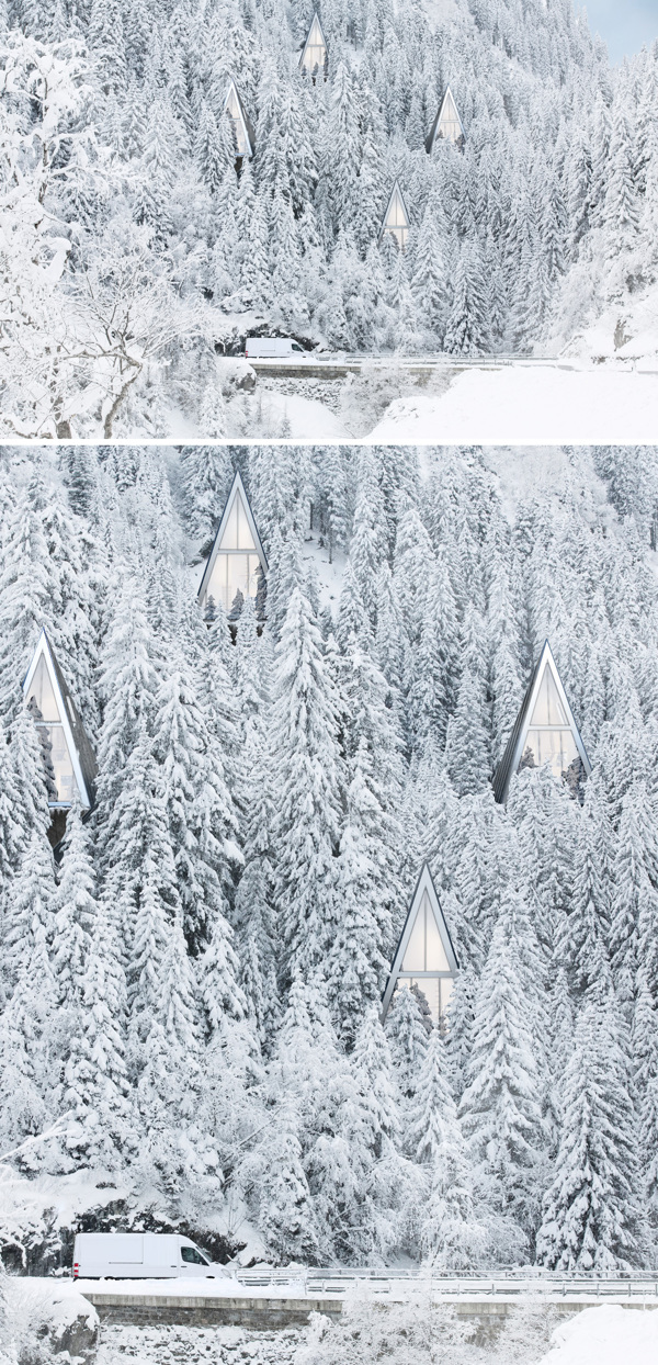 Modern Forest Homes (3)
