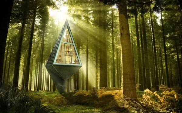 Modern Forest Homes (9)