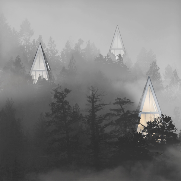 Modern Forest Homes (8)