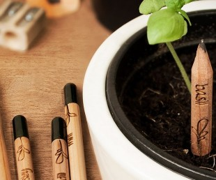 Sprout – A Pencil That Grows