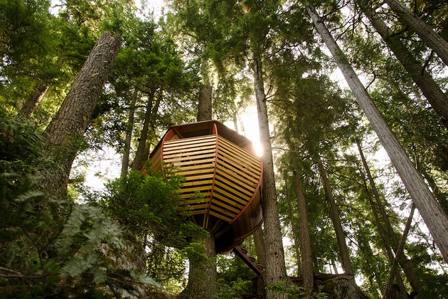 Secret HemLoft Tree House An Egg in a Tree