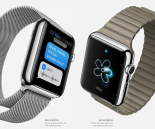 Apple Watch (1)