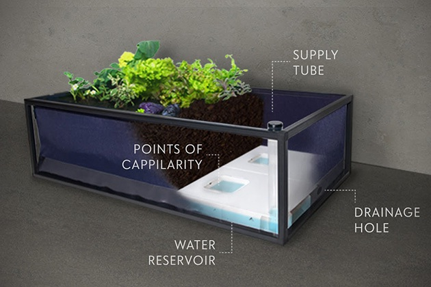 Noocity Growbed Grow Organic Food at Home