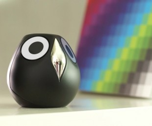 Ulo Is A Pet Owl Surveillance Camera With Attitude (6)