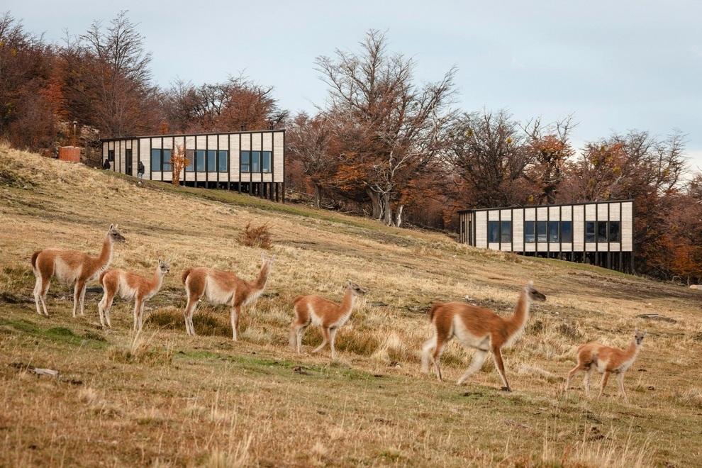 Hotel Awasi Patagonia in Chile (8)