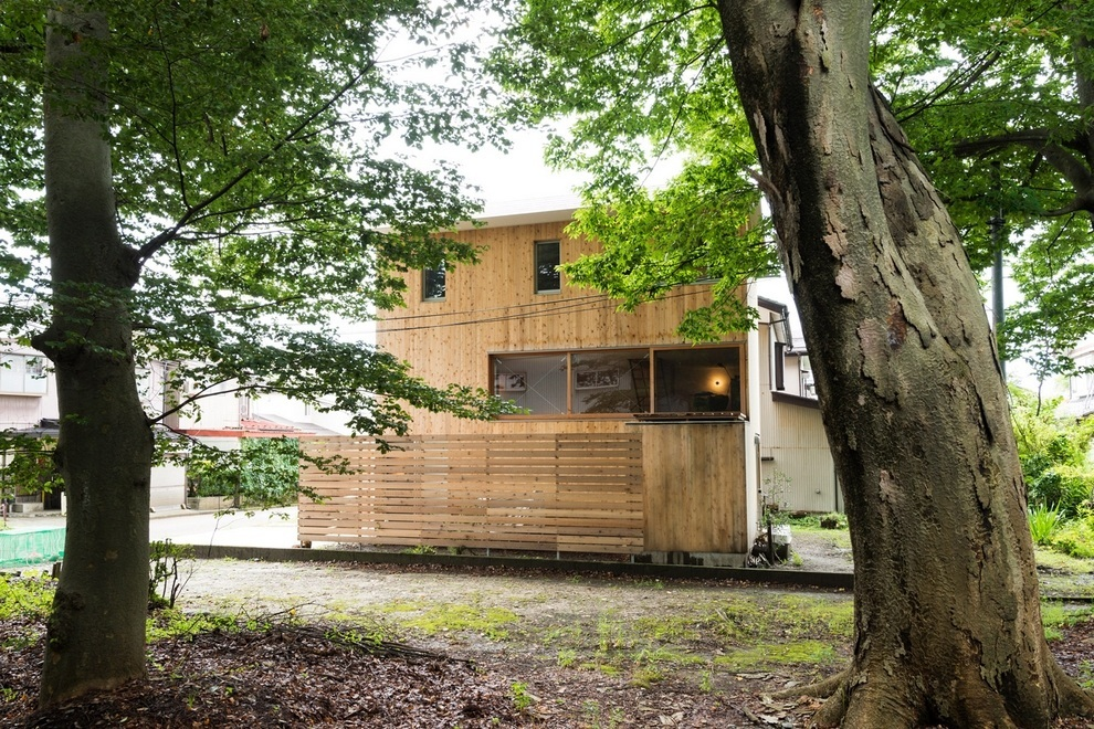Compact Wooden House by Takeru Shoji Architects (1)