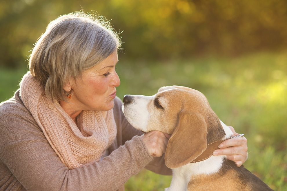 How Effective Of A Treatment Is Pet Therapy For The Elderly