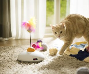 Pawbo Catch Cat Teaser Toy (3)